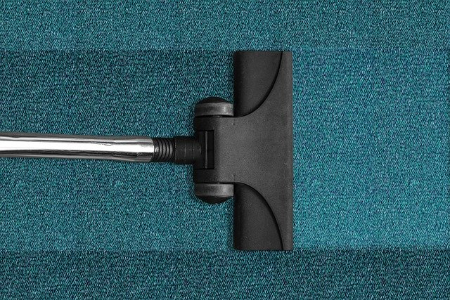 How To Remove Stains From Your Carpets