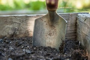 Helpful Tips For Great Residential Landscape Improvements!