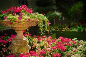 Read more about the article Tips On Landscaping In A Hot And Dry Area
