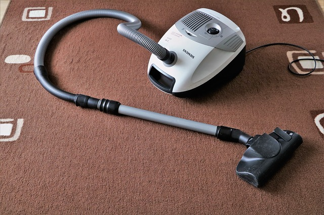 Enjoying A Clean Home: Easy Carpet Cleaning