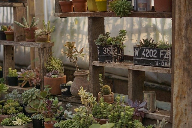 Tools You Will Need To Do Your Own Landscaping