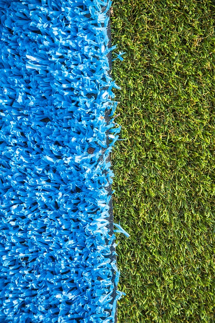 Keep That Carpet Looking Great With These Tips