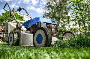 Landscaping Ideas For New Home Construction Sites